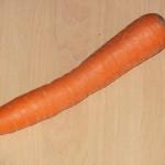 Narandžasti koren zvani šargarepa