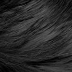 Opadanje i nega kose