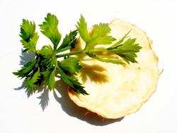 Celer mala