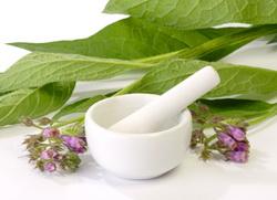 gavez mast recept priprema upotreba lekovite biljke