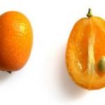 Kumkvat voće mini pomorandže fortunela