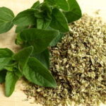 Vranilova trava čaj od divljeg origana priprema i upotreba