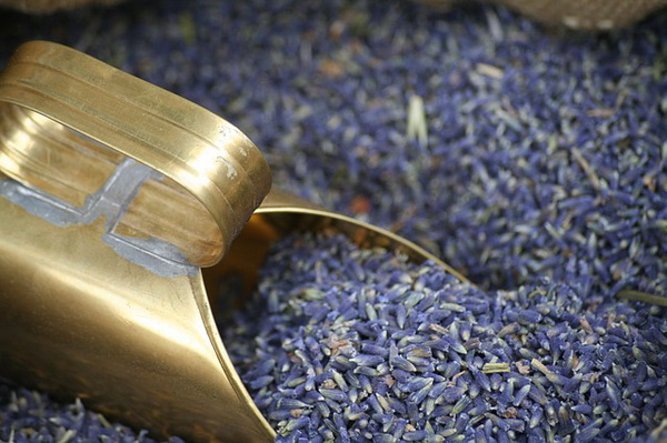Čaj od lavande za smirenje živaca i opuštanje priprema – Lekovite biljke