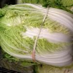 Kineski kupus salata priprema recepti i uzgoj