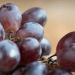 Sok od grožđa domaći bez kuvanja kako se pravi recept