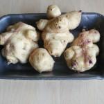 Čičoka može zameniti krompir