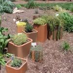 Ukrasne, začinske i lekovite biljke
