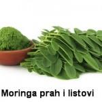 Moringa prah ulje kapsule biljka zeleno zlato