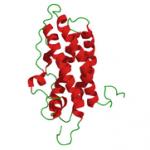 Povišen prolaktin hormon i kako smanjiti prolaktin
