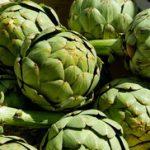 Artičoka kapsule čaj i kapi od artičoke kao lek protiv masnoće