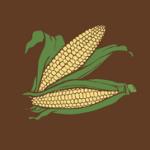 Kukuruz šećerac zdravlje kalorije recepti