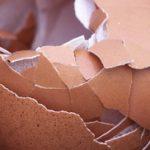 Ljuska od jaja i limun za kosti kao lek protiv osteoporoze