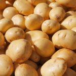 Voda od kuvanog krompira i ljuske za šta se koriste upotreba