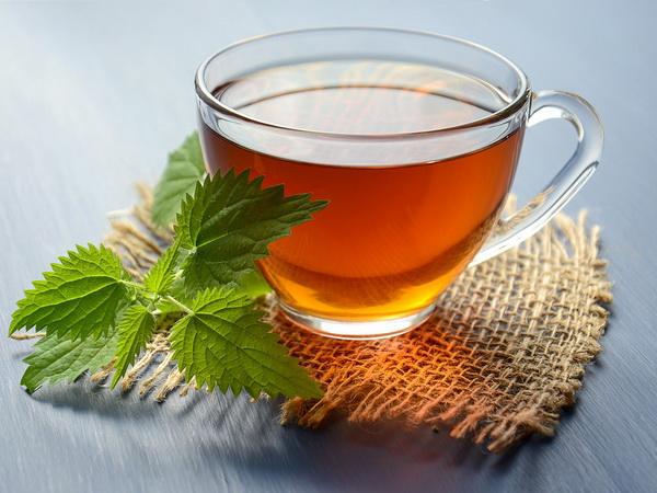 čaj od koprive za prostatu)