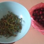 Ne bacajte peteljke trešnje i višnje. Lek star stotinama godina