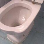 U wc šolju stavite beli luk da prenoći pa sipajte sirće. Evo šta će se desiti