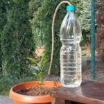 JEDNOSTAVAN SISTEM ZA NAVODNJAVANJE KAP PO KAP: Napravite domaću super kapalicu za biljke